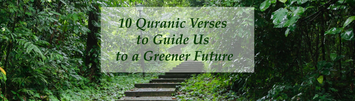 The Eco Muslim: 10 Qur'an Verses on the Environment and Do-Able
